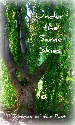 Under the Same Skies Cover